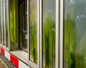 معماری با بهرهوری انرژی بالا به کمک شیشه